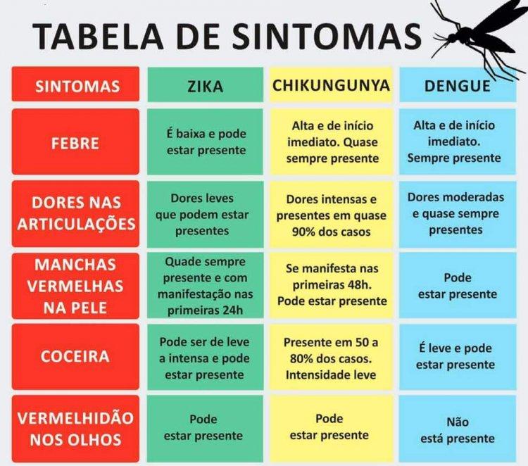 Diferenciar dengue e gripe forte - Jornal da Cidade